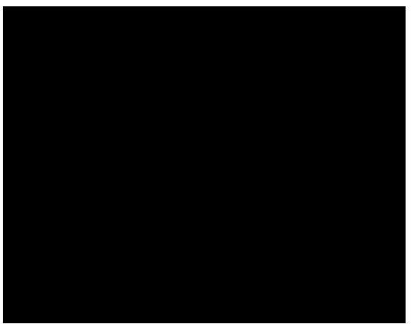 roni-syvin-CHEMIKOVO-SRDCE