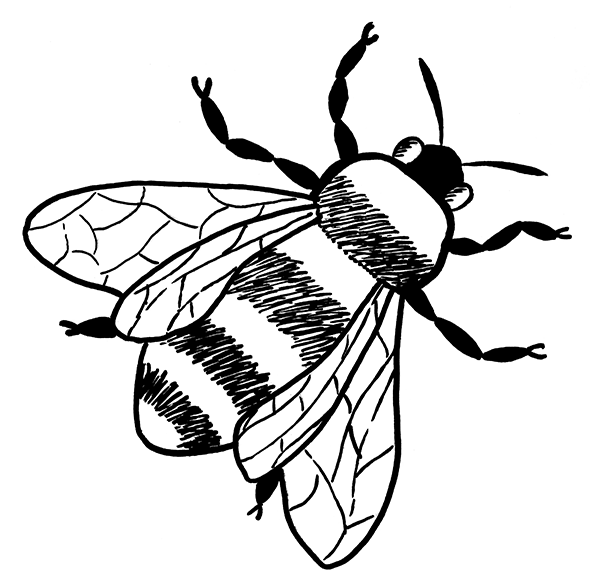roni-syvin-VCELA
